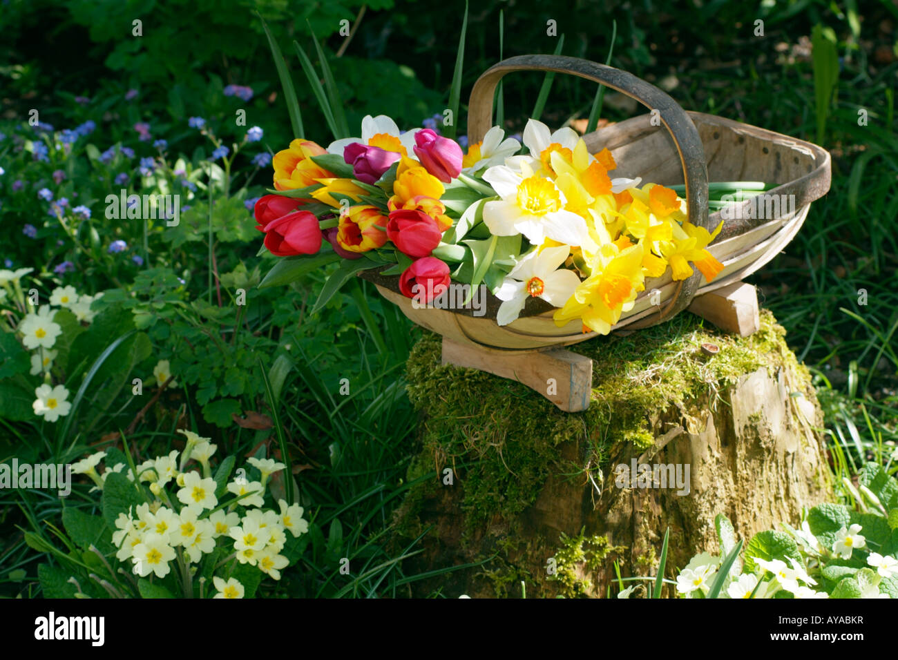 English Country Garden Scene Stock Photos & English Country Garden ...