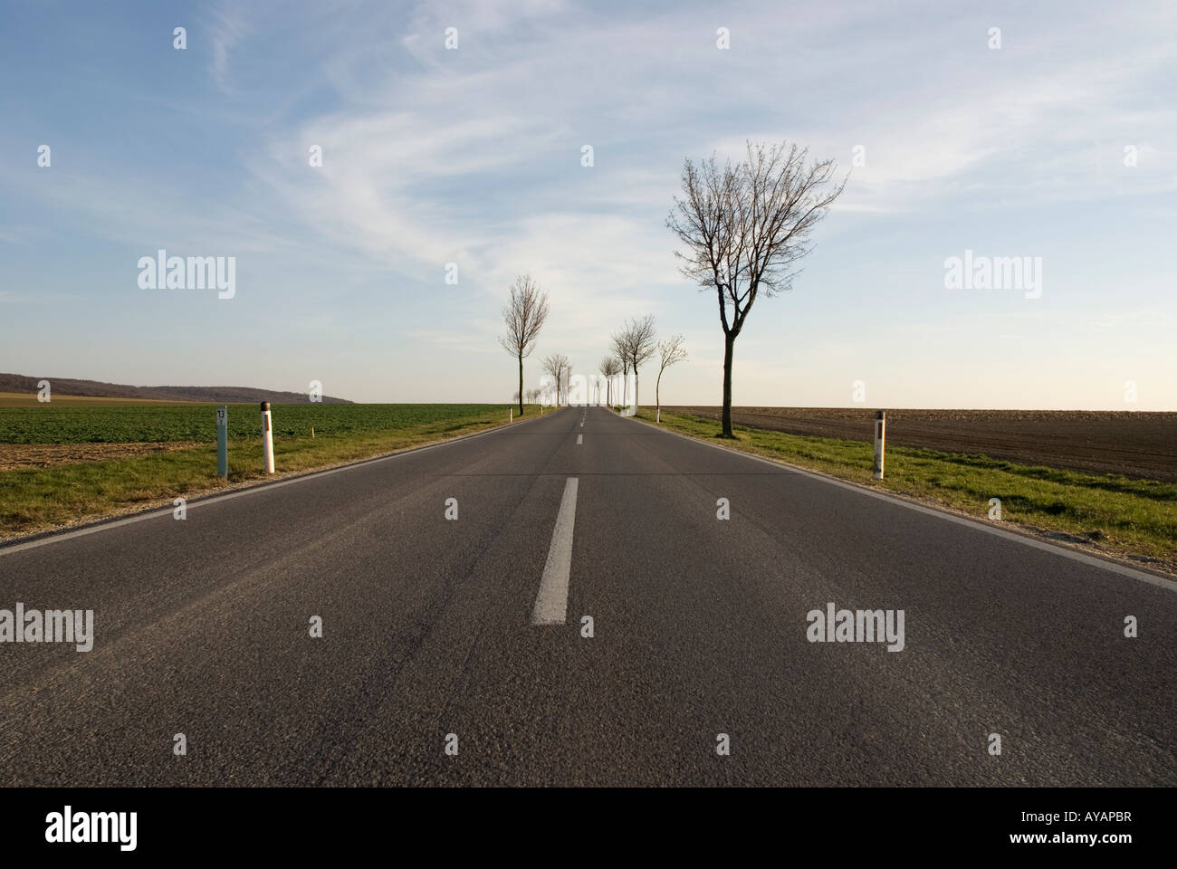 wideangle of road on the countryside in lower Austria, beginning of spring, trees without leaves, blue sky with - Stock Image
