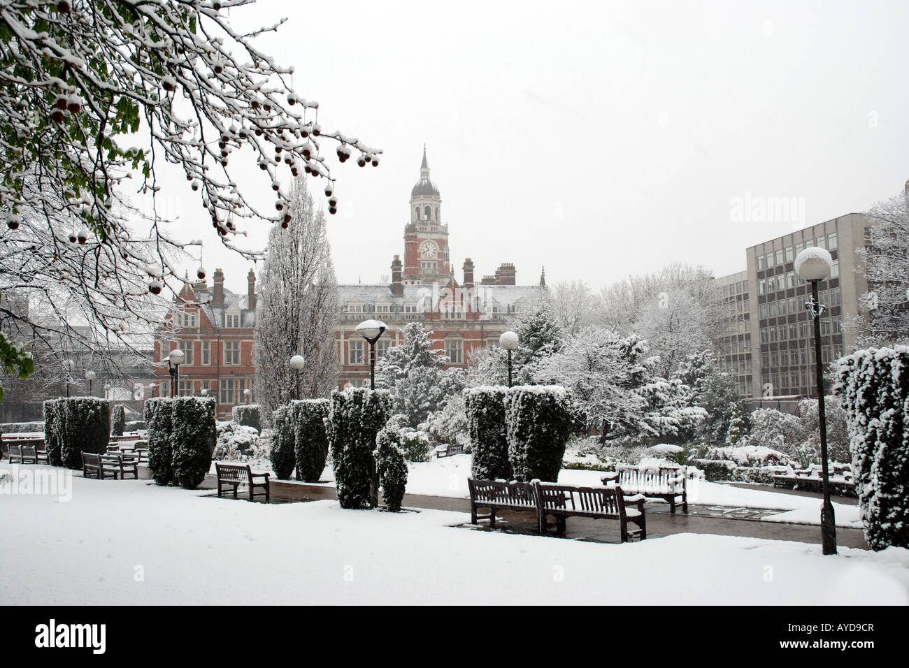 Snow covering Queens Gardens, Croydon, Surrey, UK - Stock Image