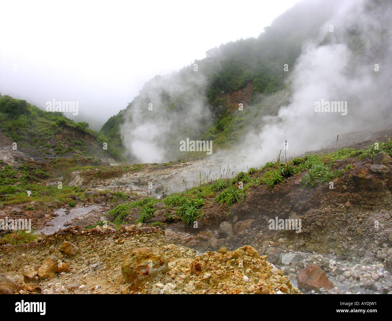 The Valley of Desolation a moss covered volcanic landscape of steaming hot springs boiling mud sulphoric rock and Stock Photo