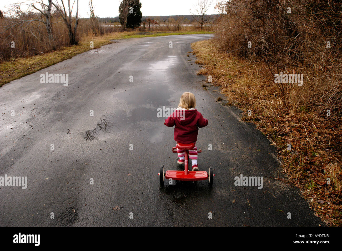 Tricycle bike ride in winter Gordon M Grant Photo - Stock Image