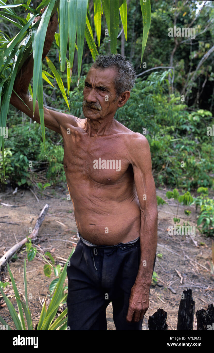 River Amazon Older man on land he cultivates - Stock Image