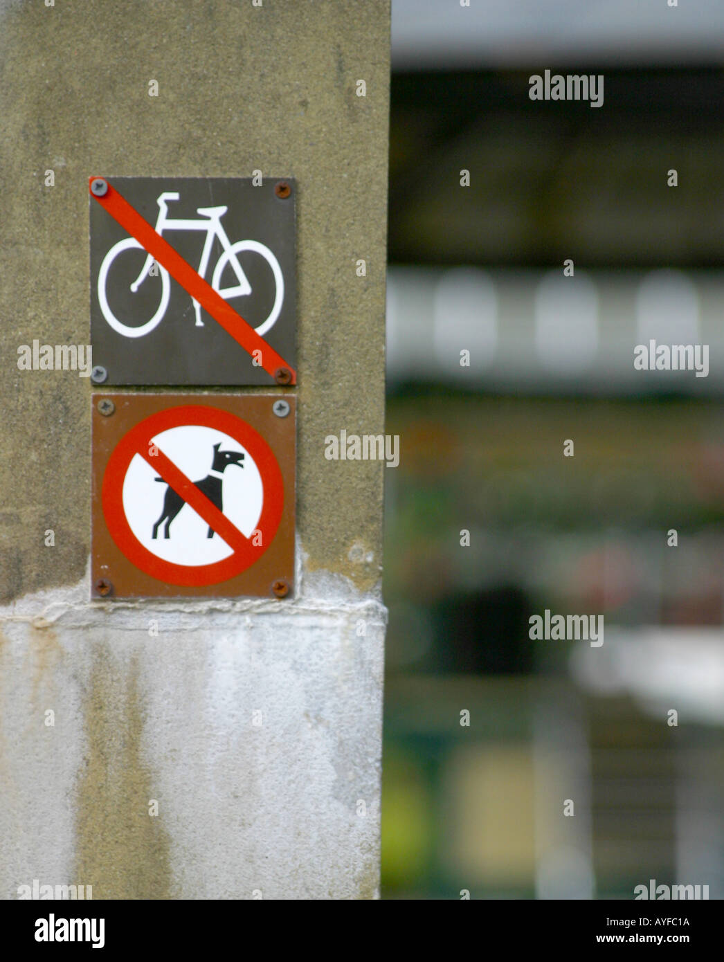 No dogs and no cycling sign on gatepost - Stock Image