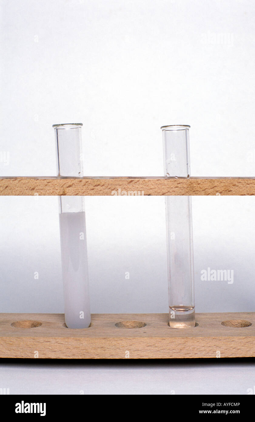 Magnesium sulphate & barium nitrate after mixing - Stock Image