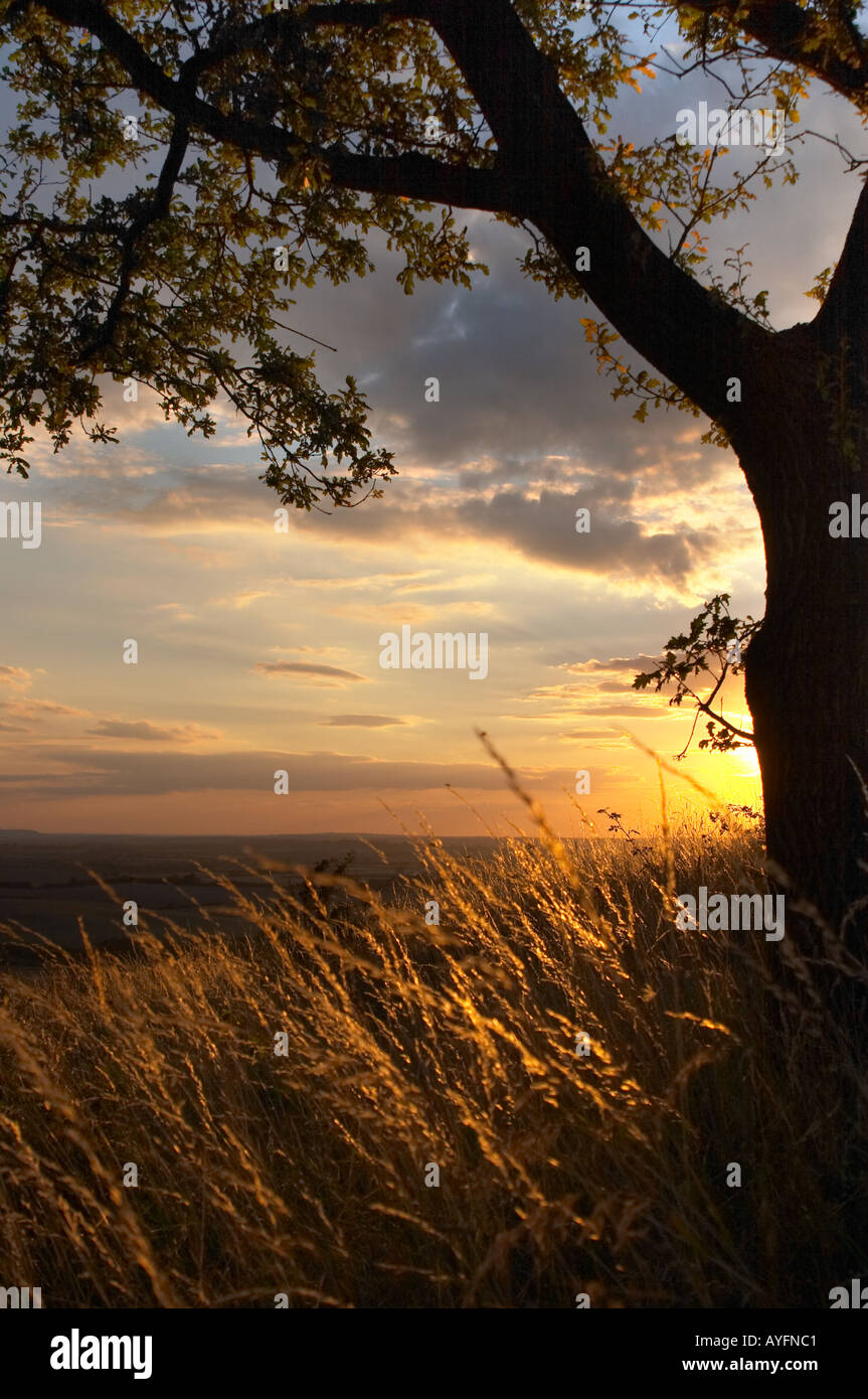 Sunset on Dunstable Downs - Stock Image