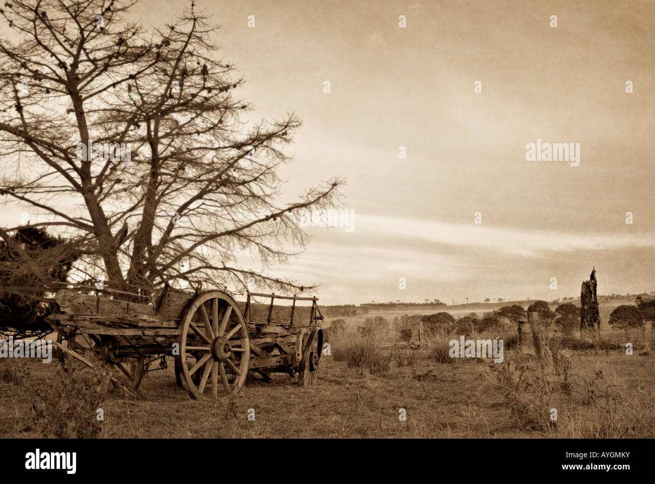 sepia and slightly grungy image of an old farm wagon - Stock Image