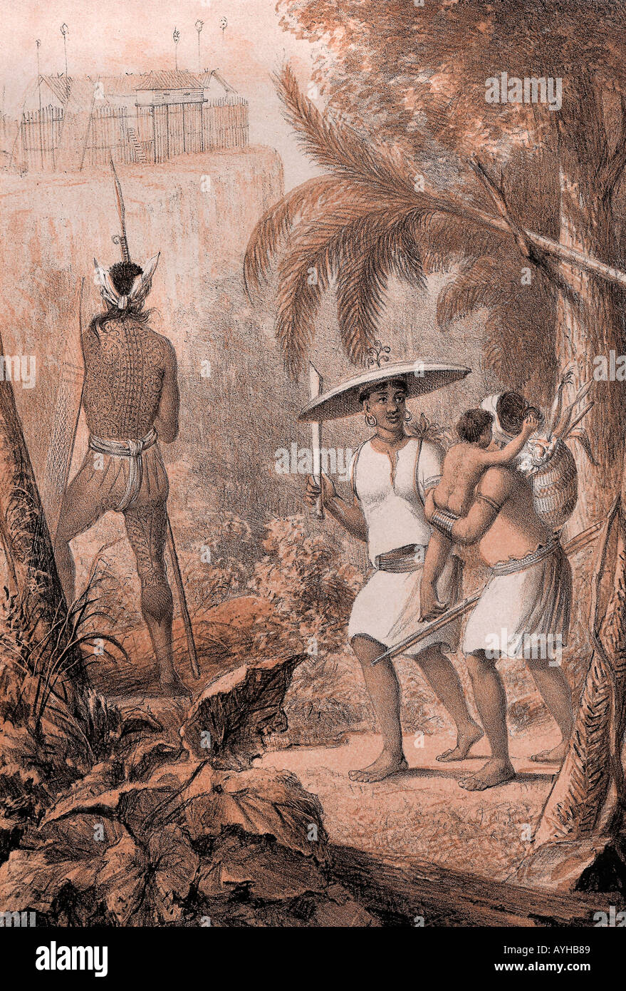 Victorian etching of a jungle scene in Borneo Kalimantan The Dayak and Iban still live in Kalimantan and neighbouring Sarawak - Stock Image