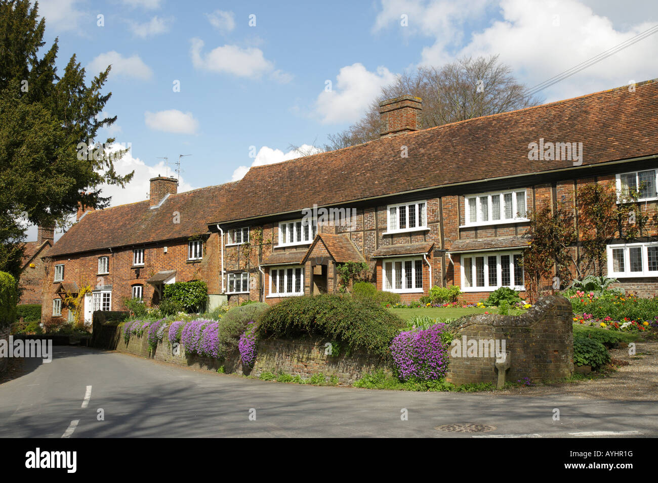 A row of cottages displaying Aubrietia in the small village of Ivinghoe in Buckinghamshire UK - Stock Image