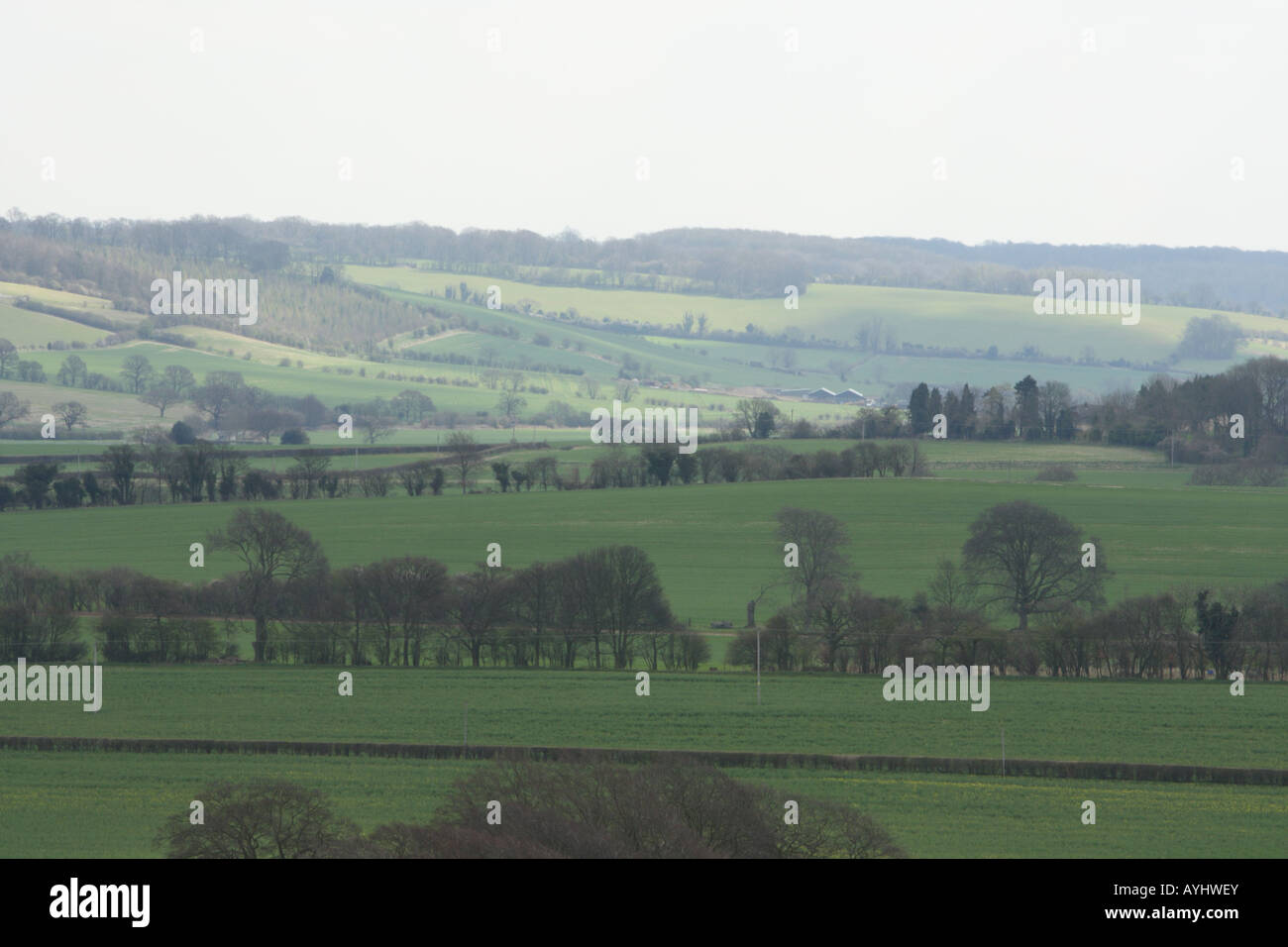 Distant view of the sun soaked chiltern hills near Dagnall Buckinghamshire - Stock Image