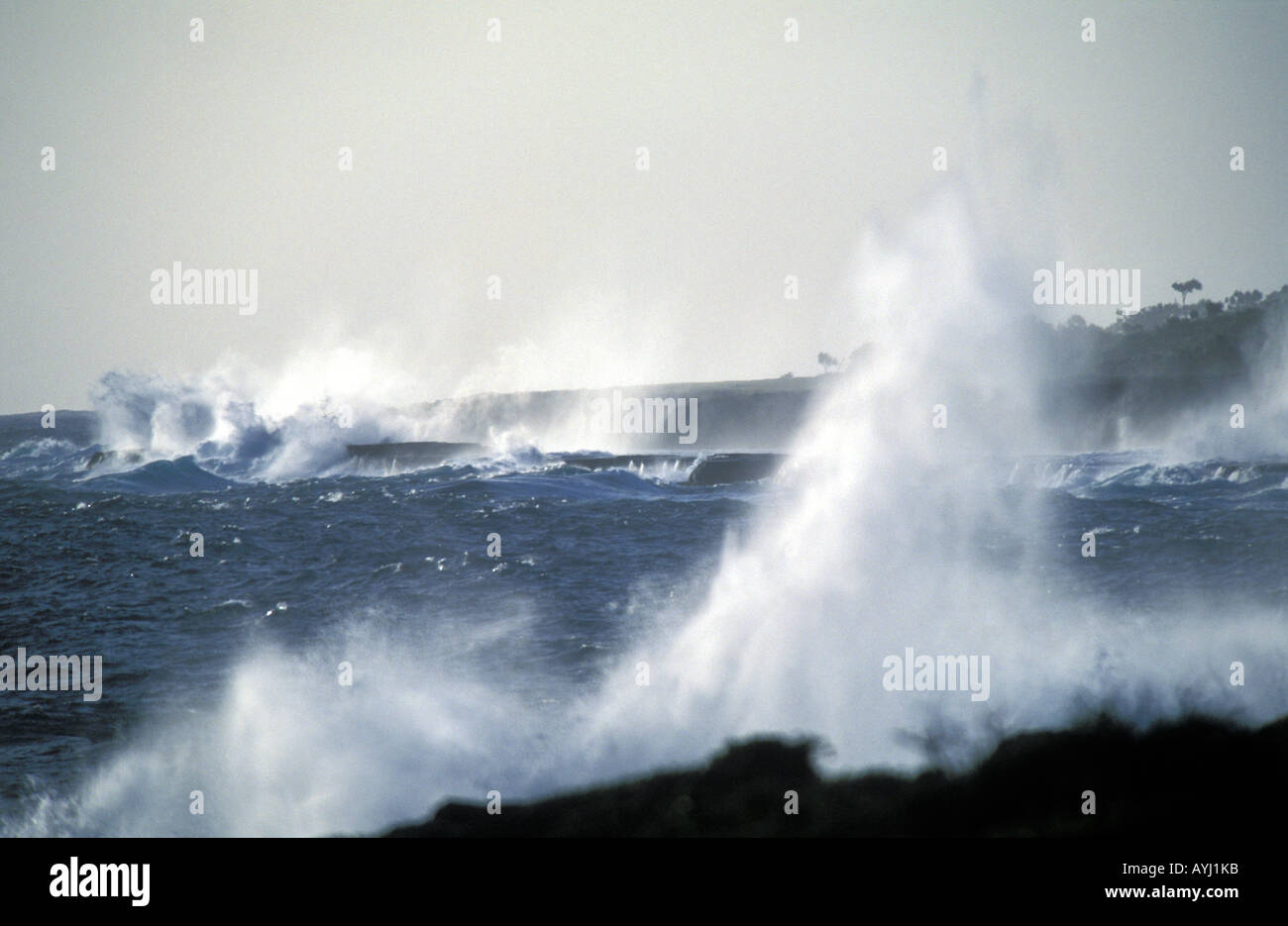 Waves of the Pacific Ocean beating on the north coast of Tongatapu the main island of Tonga Stock Photo