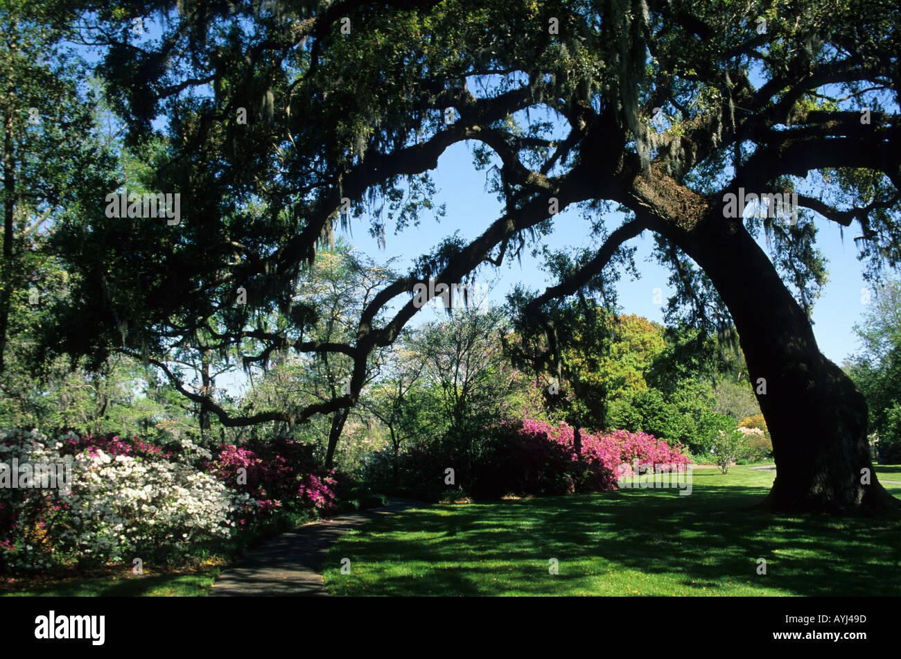 Brookgreen Gardens In South Carolina Murrells Inlet
