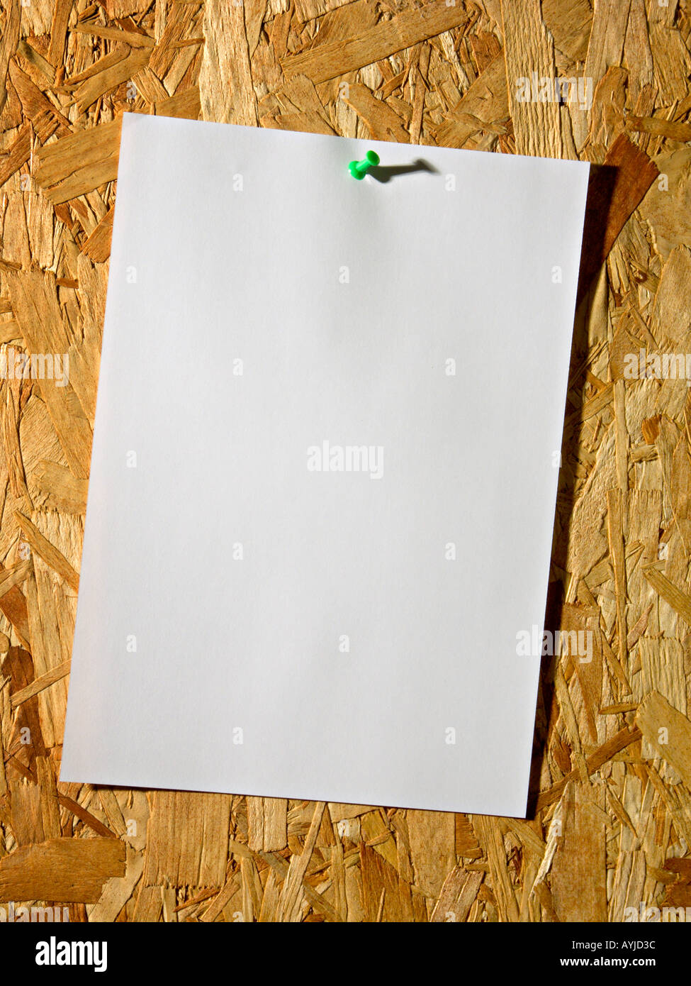 A blank notice pinned to a board - Stock Image