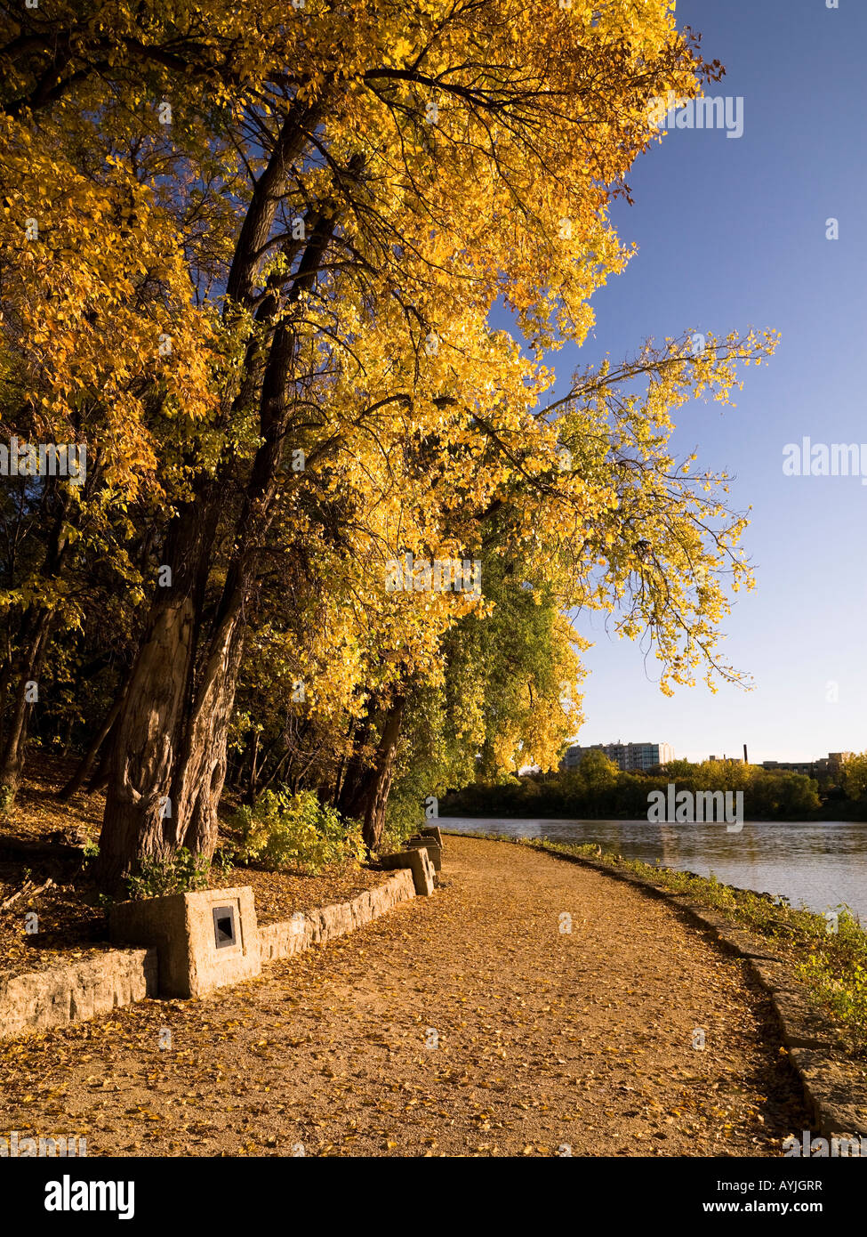 Path along a river, The Forks, Winnipeg, Manitoba, Canada - Stock Image