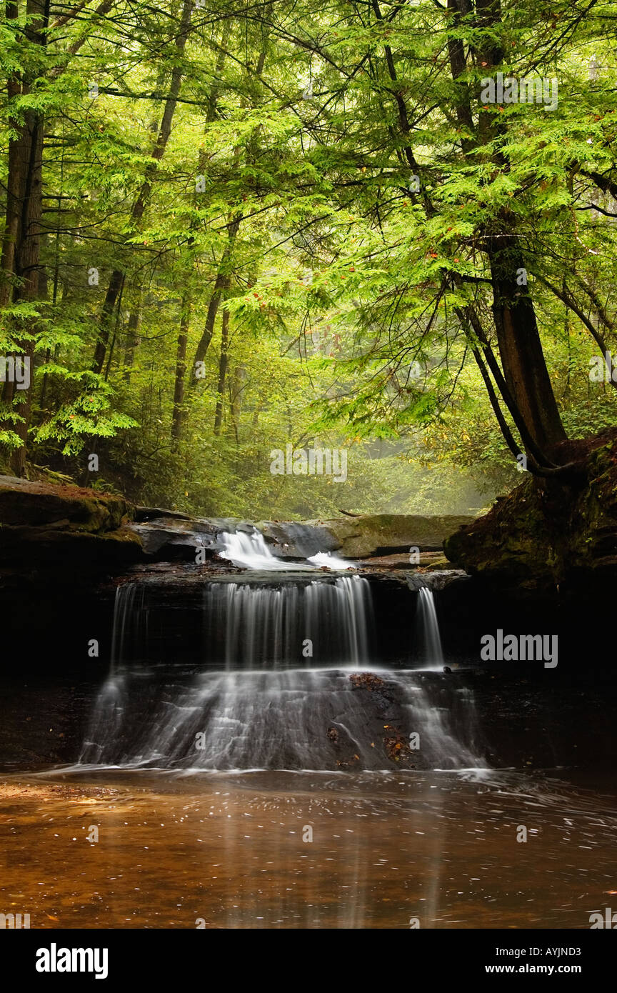 Creation Falls Clifty Wilderness Red River Gorge Geological Area Daniel Boone National Forest Kentucky - Stock Image