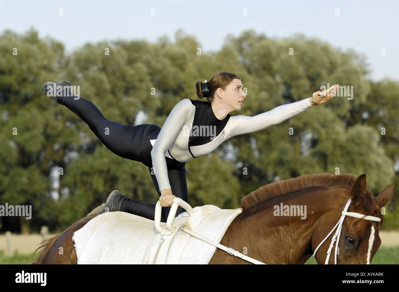 Vaulting lady during the compulsory exercise flag (Germany) - Stock Image