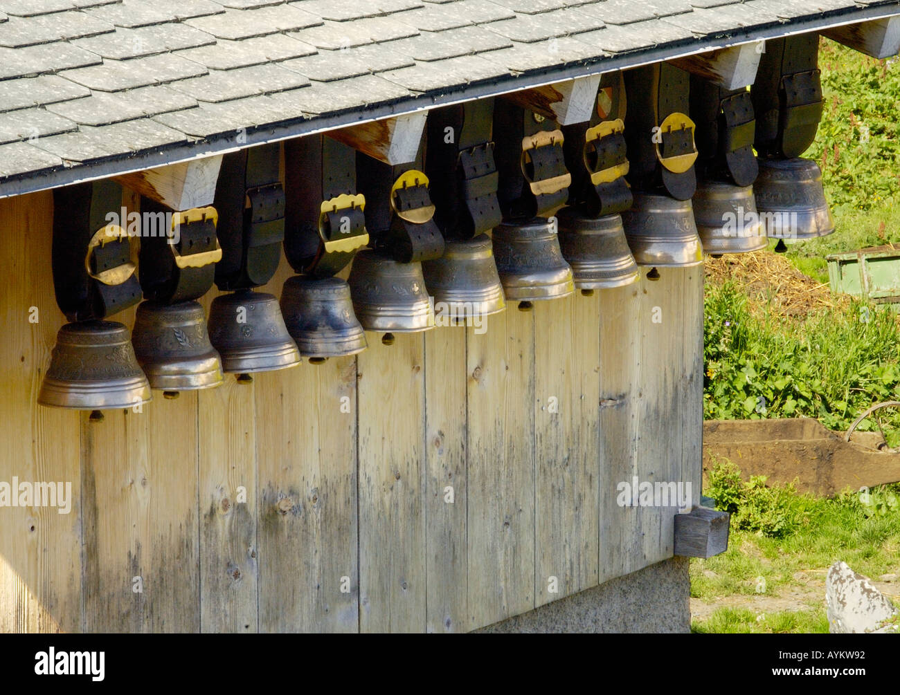 Swiss Cowbells High Resolution Stock Photography And Images Alamy