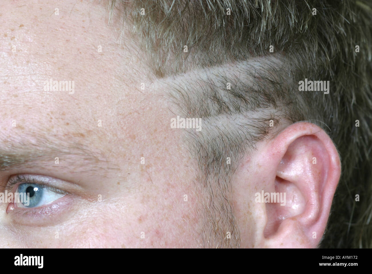 Very valuable Eyebrow shaved lines