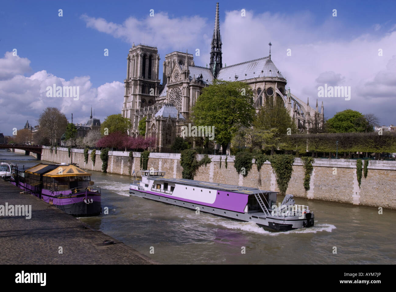 Notre Dame Cathedral and the Seine River in springtime. - Stock Image