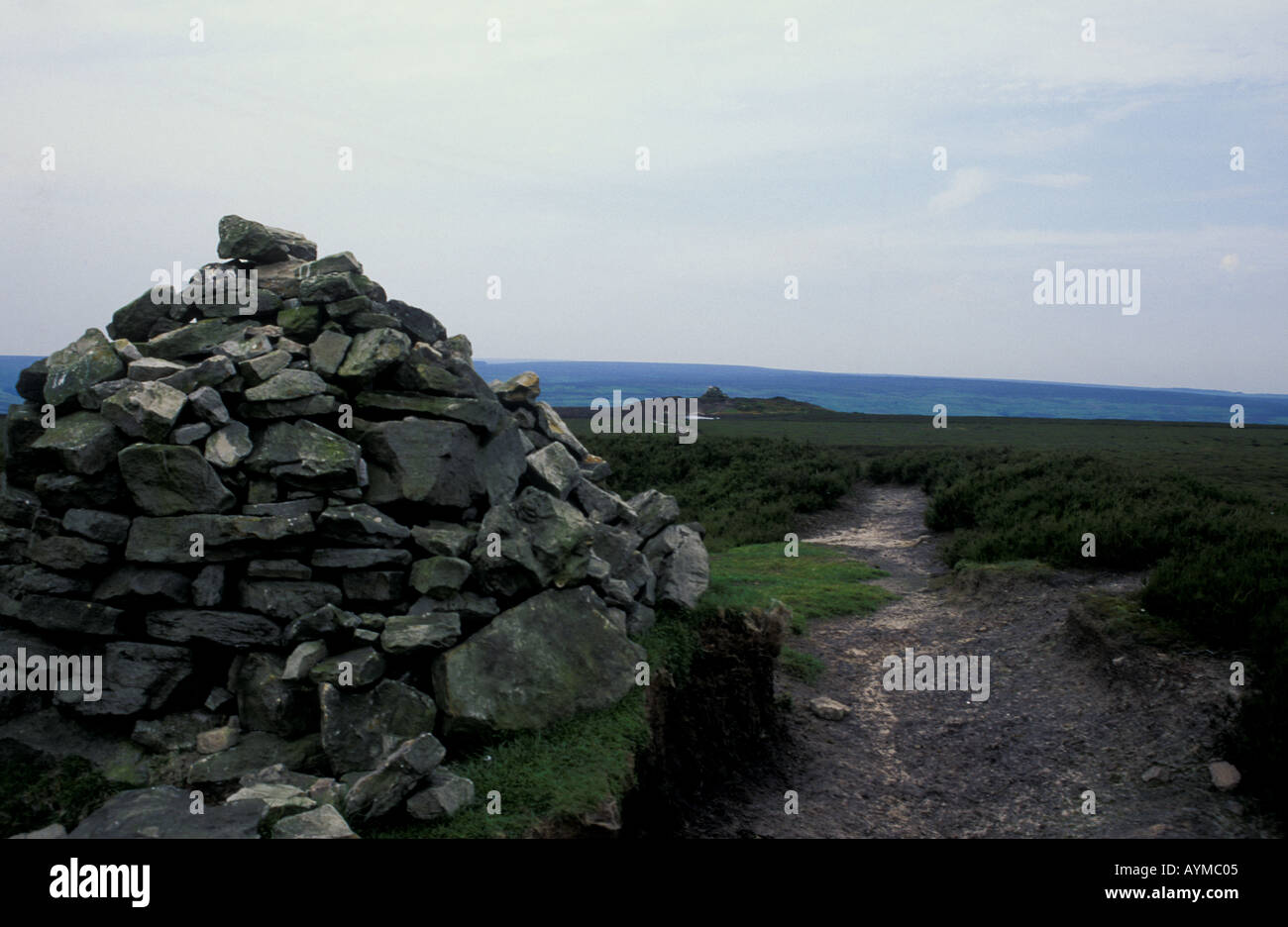 North Yorkshire Moors Two Howes on Two Howes Rigg - Stock Image