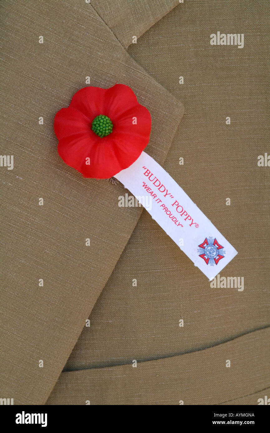 Buddy Poppy On Lapel Of Jacket Remberance Poppy Day Stock Photo