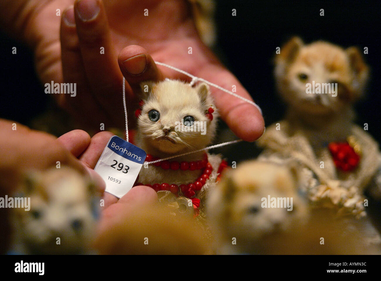 A lot number is placed on a member of the congregation attending The Kittens' Wedding by Victorian taxidermist Walter Potter. - Stock Image