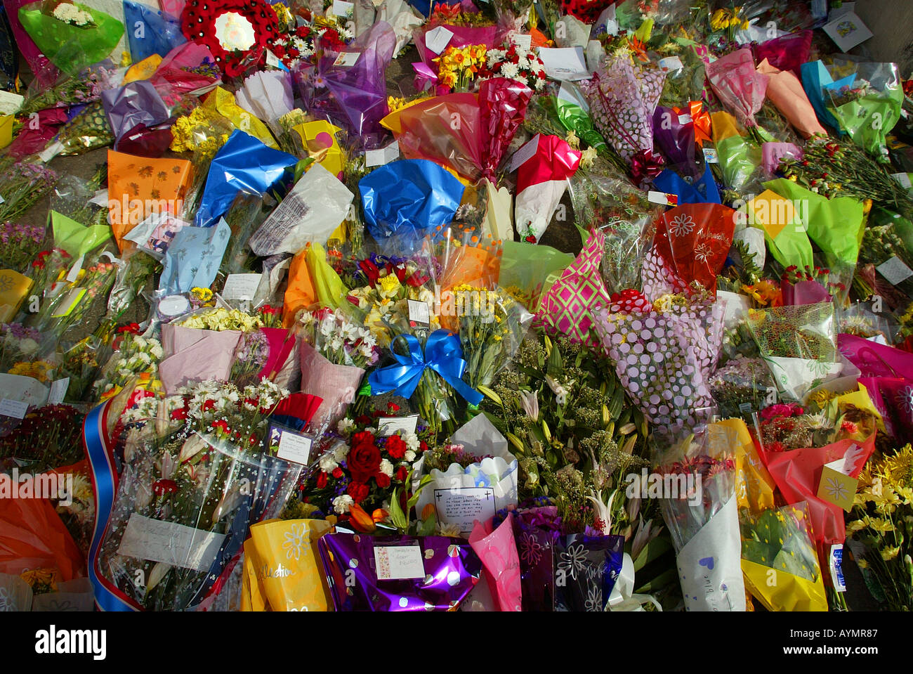 Floral tributes - Stock Image