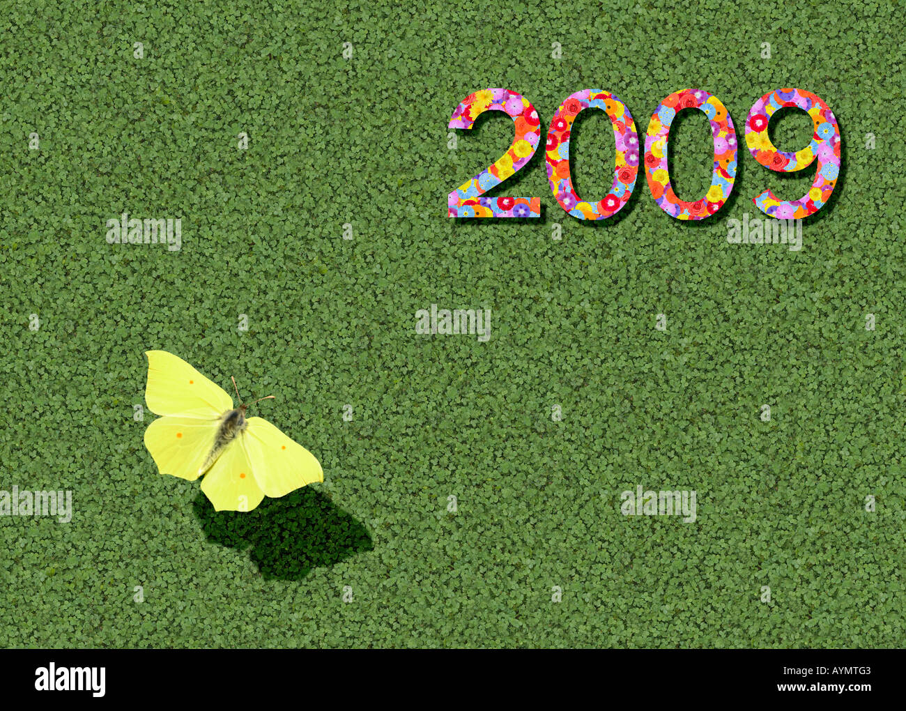 year 2009 with brimstone butterfly Gonepteryx Rhamni - Stock Image