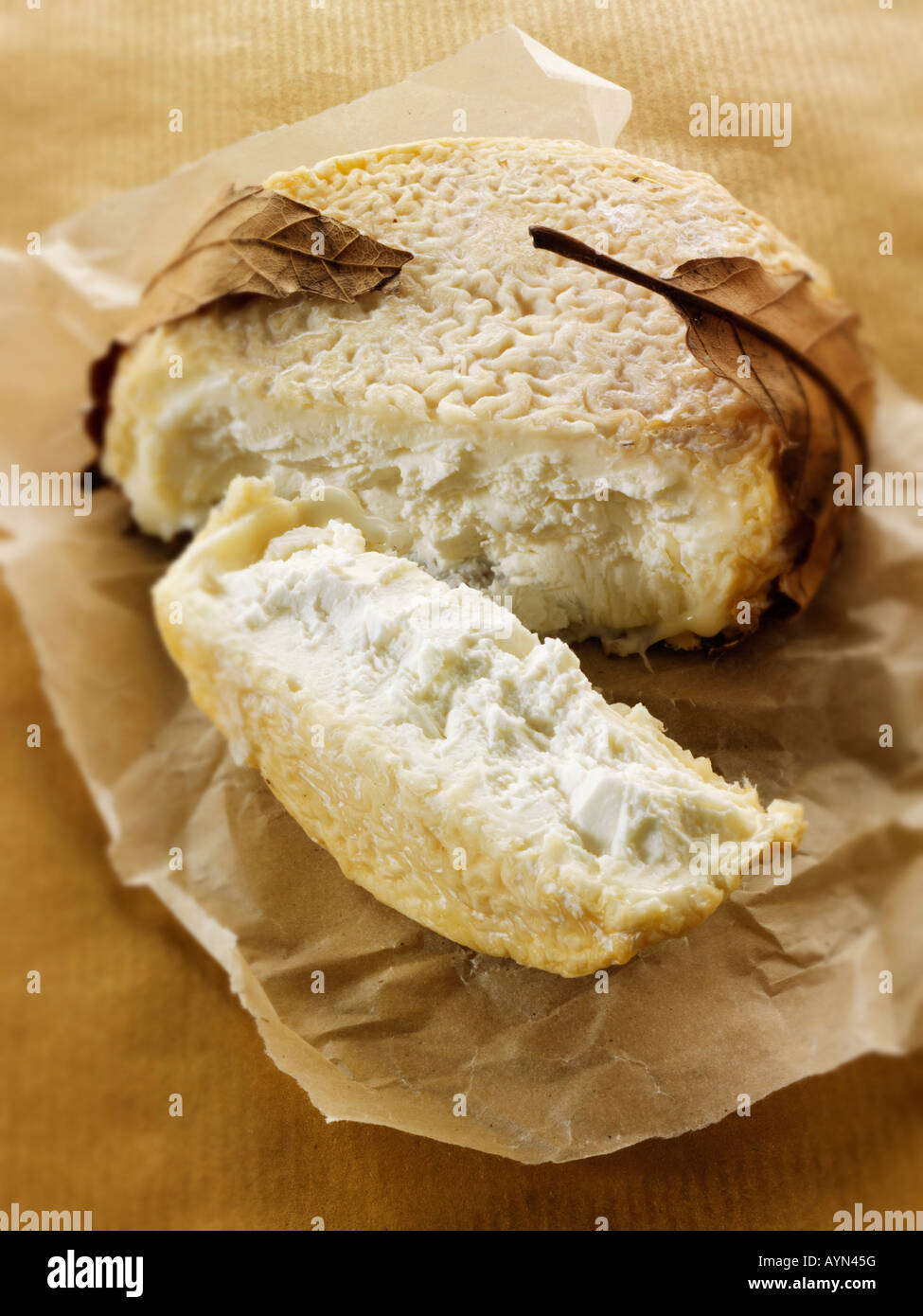 French Goats ( Chevre) Cheese from Nornmandy - Soft Focus - Stock Image