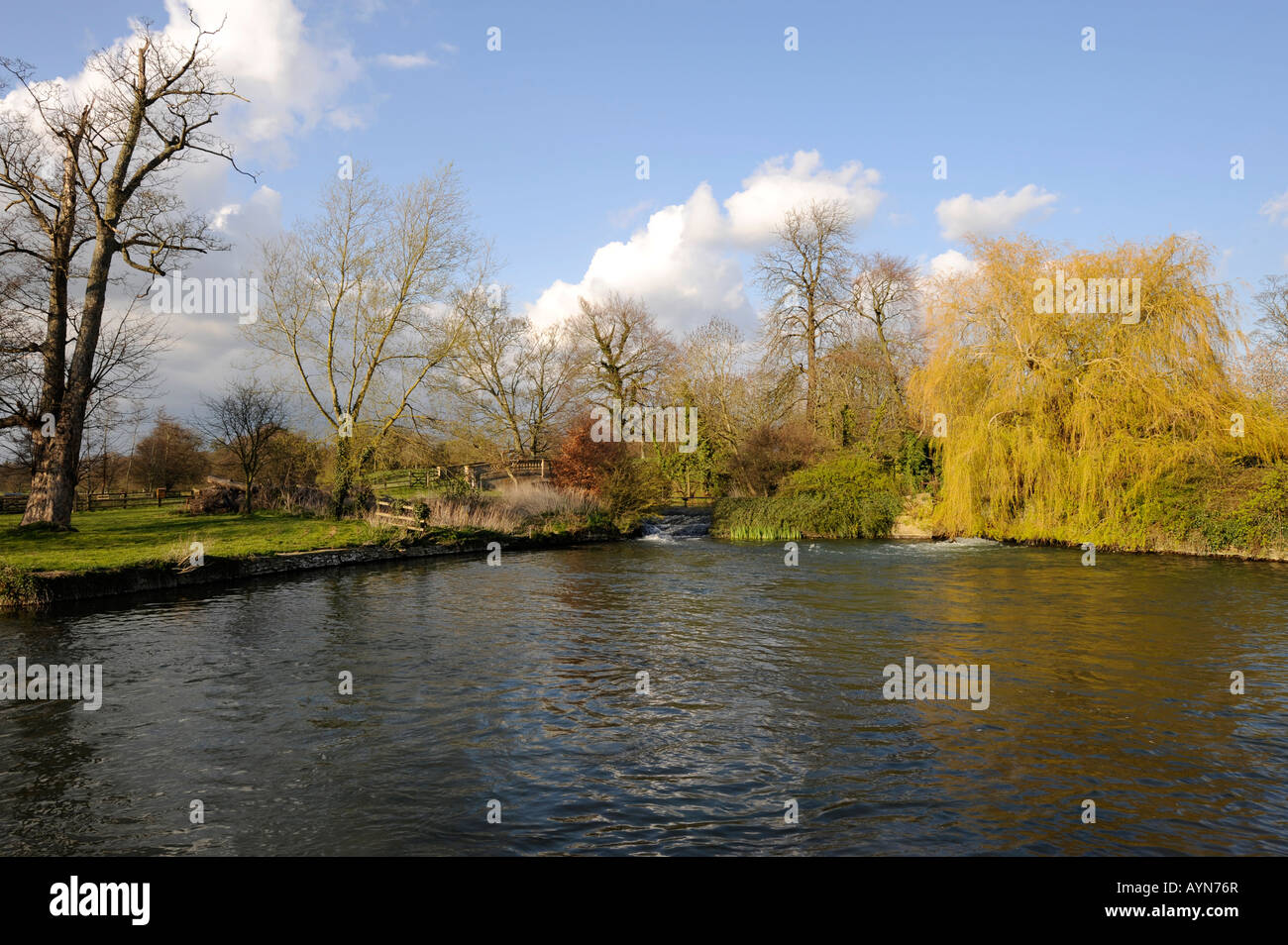 River Coln Mill Pond at Fairford - Stock Image