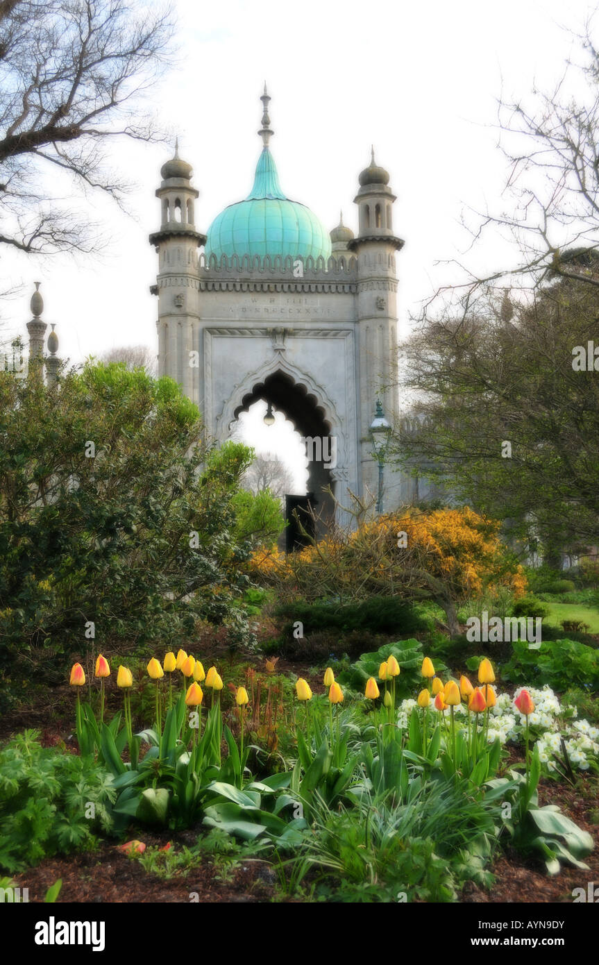 Yellow Tulips in the Brighton Pavilion Gardens, Brighton, East Sussex, England - Gateway - Stock Image