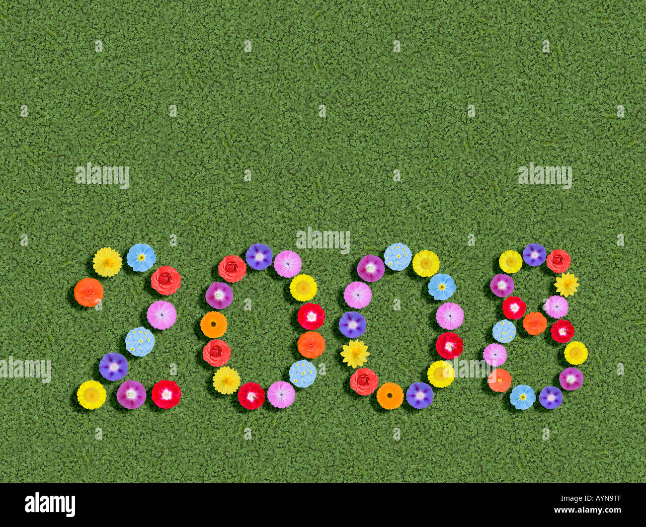 year written with flowers spelled out prewritten edited - Stock Image