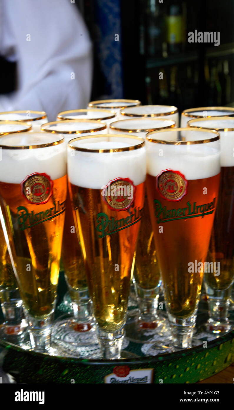 Beer czech beer Pilsner Urquell beer glasses Stock Photo: 9802438