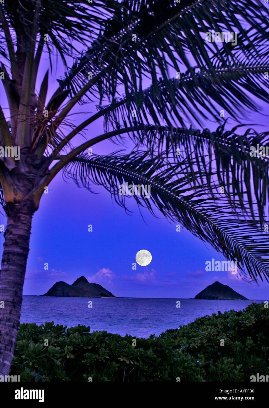 full moon rising over mokulua islands - Stock Image