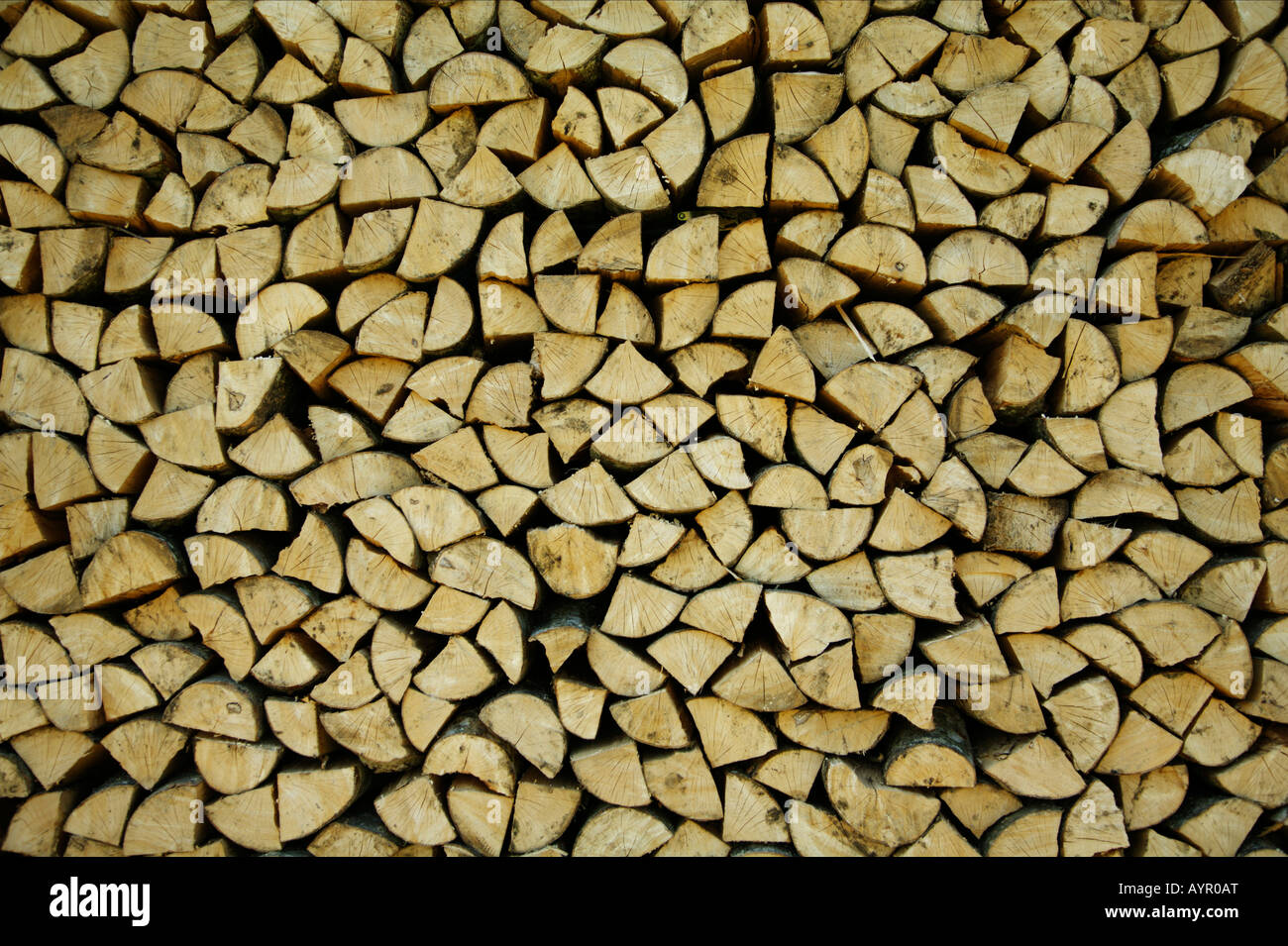 Piled up logs - Stock Image
