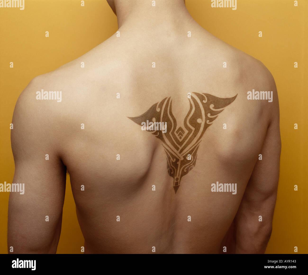 Male Henna Tattoo Across Shoulder Blades Stock Photo 3191106 Alamy