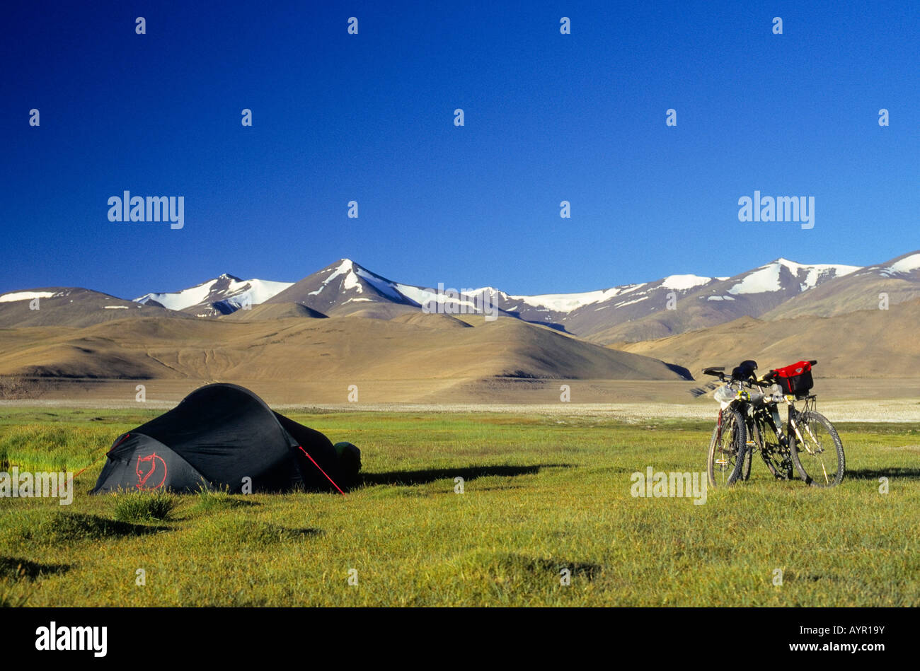 Two mountain bikes beside a tent, grass-covered plateau and snow-covered peaks, elevation over 4900 metres, Himalayas, - Stock Image