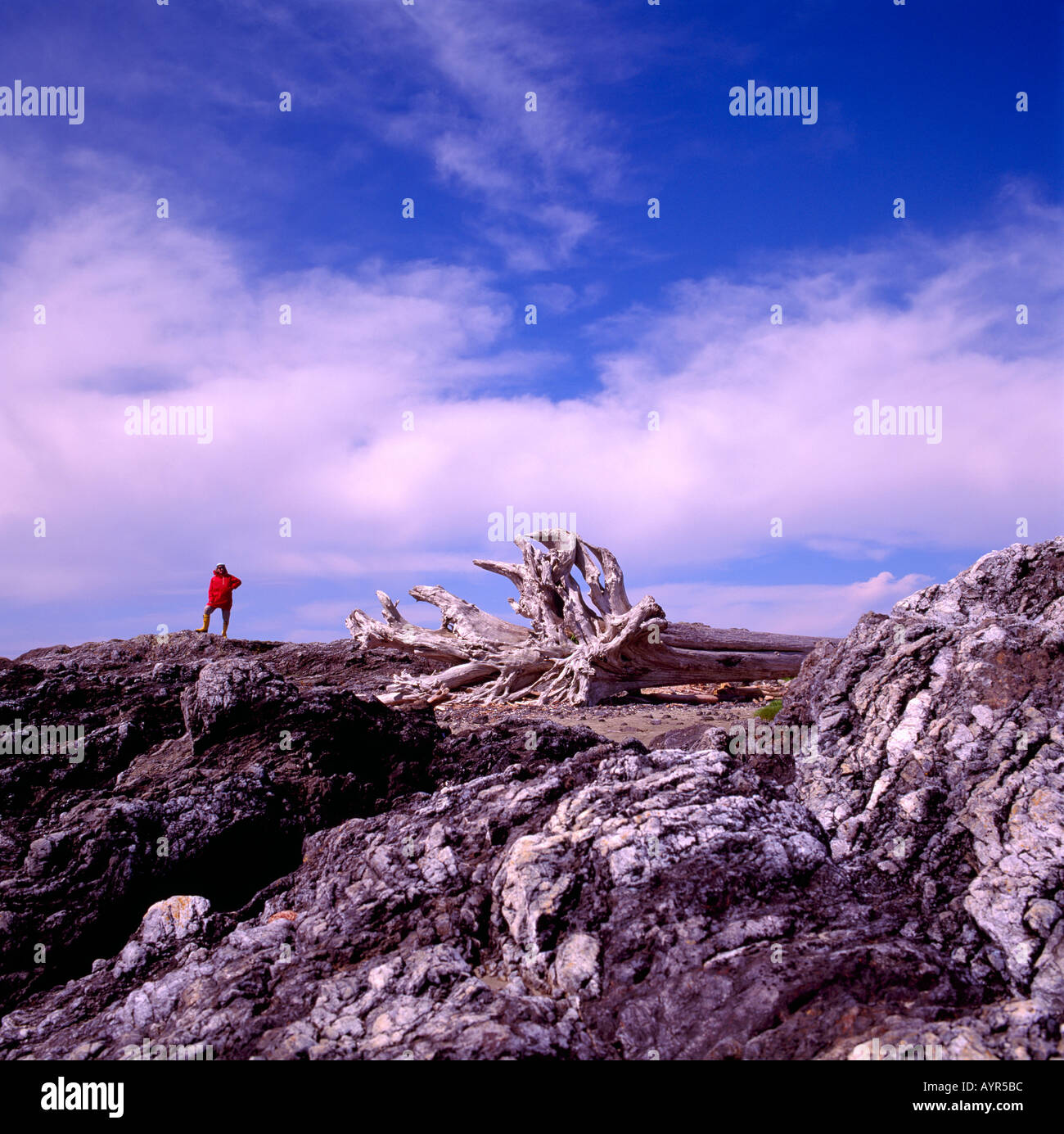 A Hiker standing on a Rocky Shore on the Pacific West Coast of Vancouver Island British Columbia Canada Stock Photo