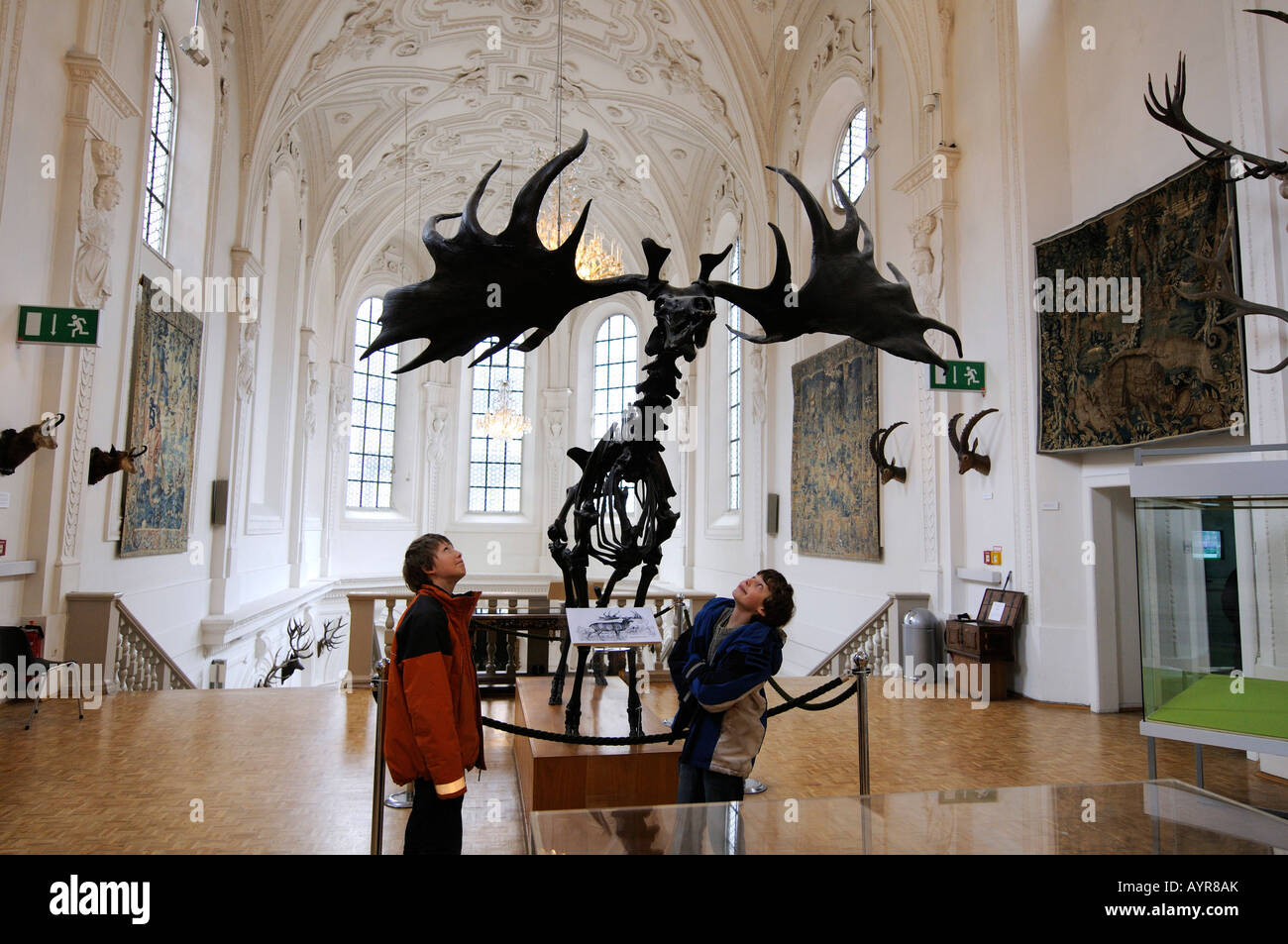 Children looking up in awe at a Megaloceros skeleton, Deutsches Jagd- und Fischereimuseum (German Hunting and Fishing - Stock Image
