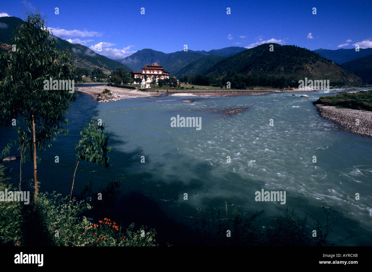 Punakha Dzong and the Mo Chhu river, Bhutan - Stock Image