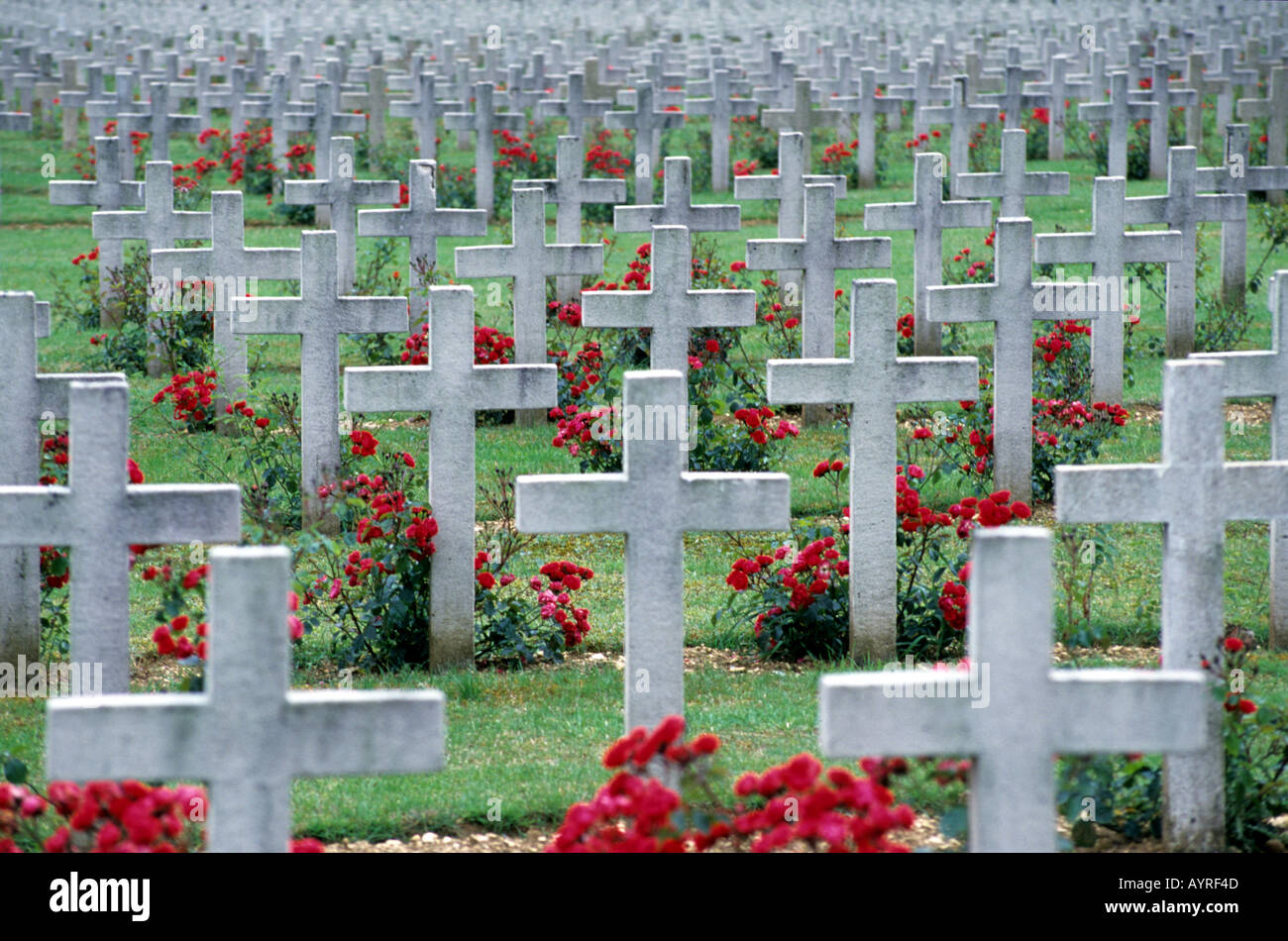 Crosses red flowers World War One cemetery Verdun France - Stock Image