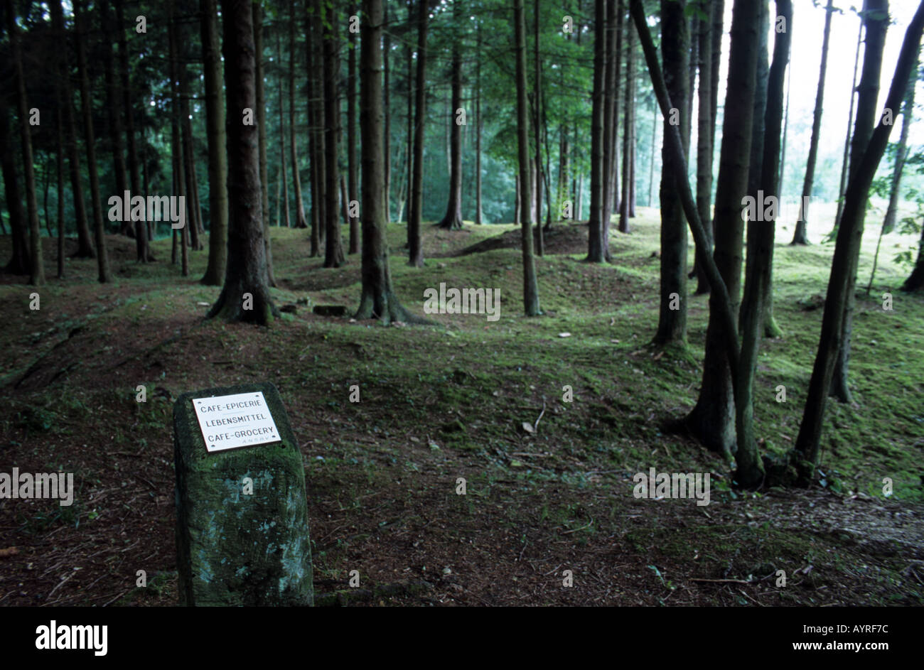 World War One craters at site of village Verdun France - Stock Image