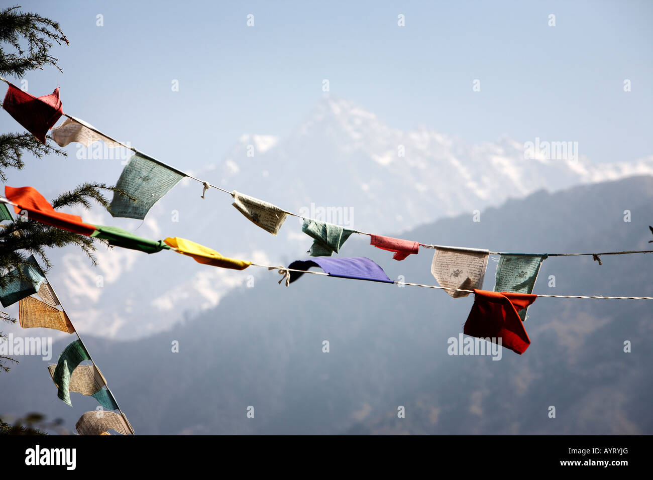 Colorful Tibetan prayer flags flap in the breeze with the Himalayan Mountains in the background - Stock Image