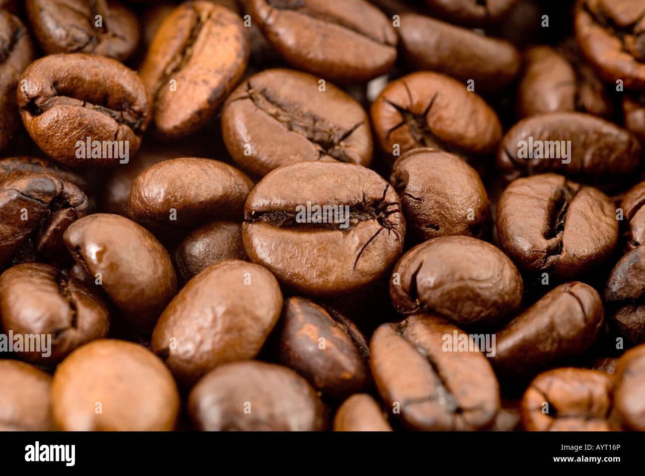 Coffee beans, macro shot - Stock Image