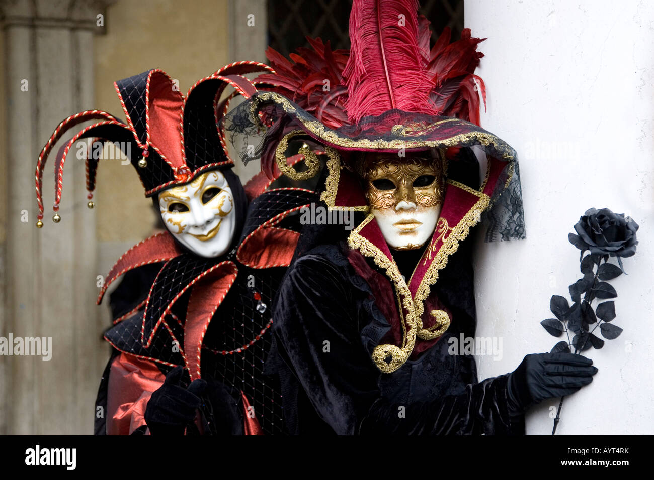 harlequin court jester costume and elegant lady with black rose in