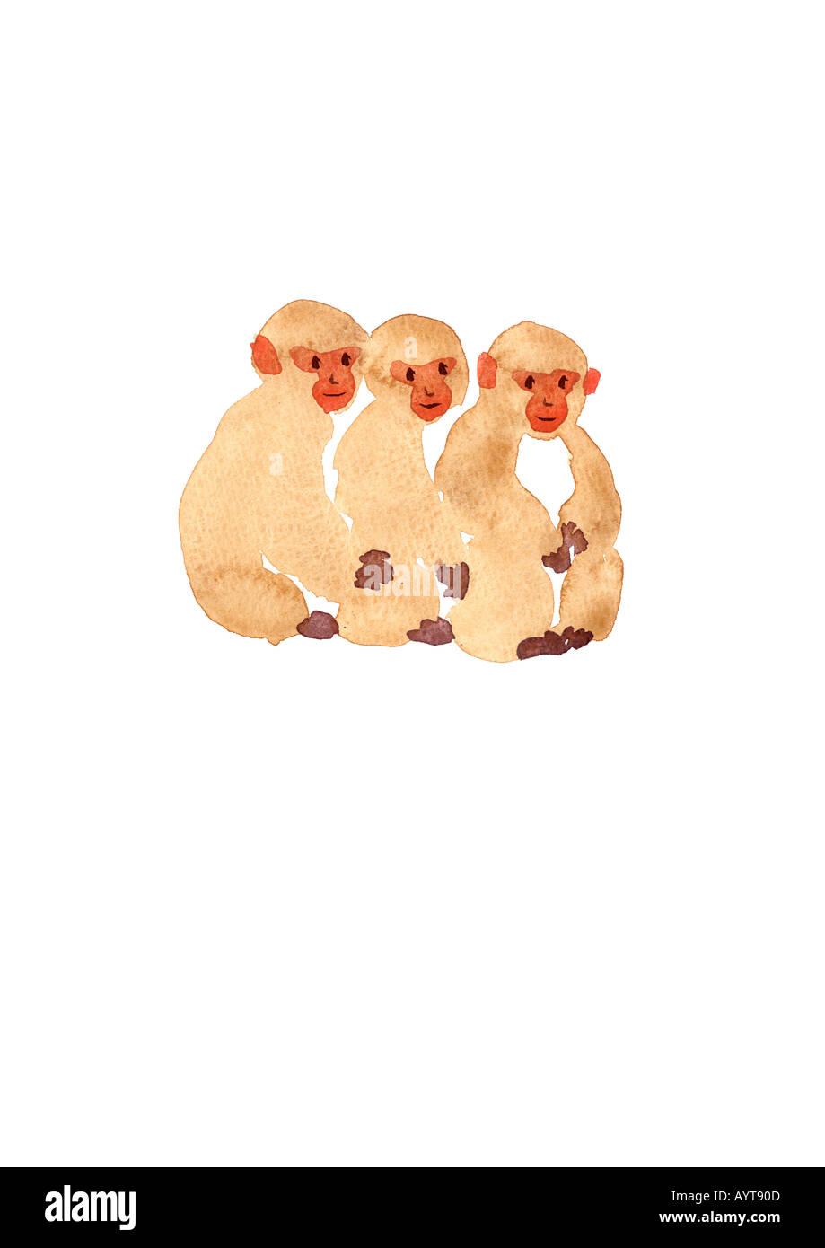 Hatice aslan uc maymun - 1 2