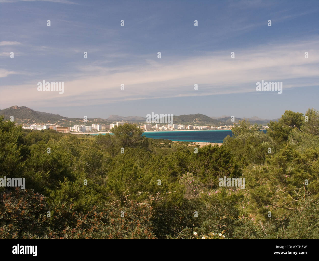View of Cala Millor with trees in foreground - Stock Image