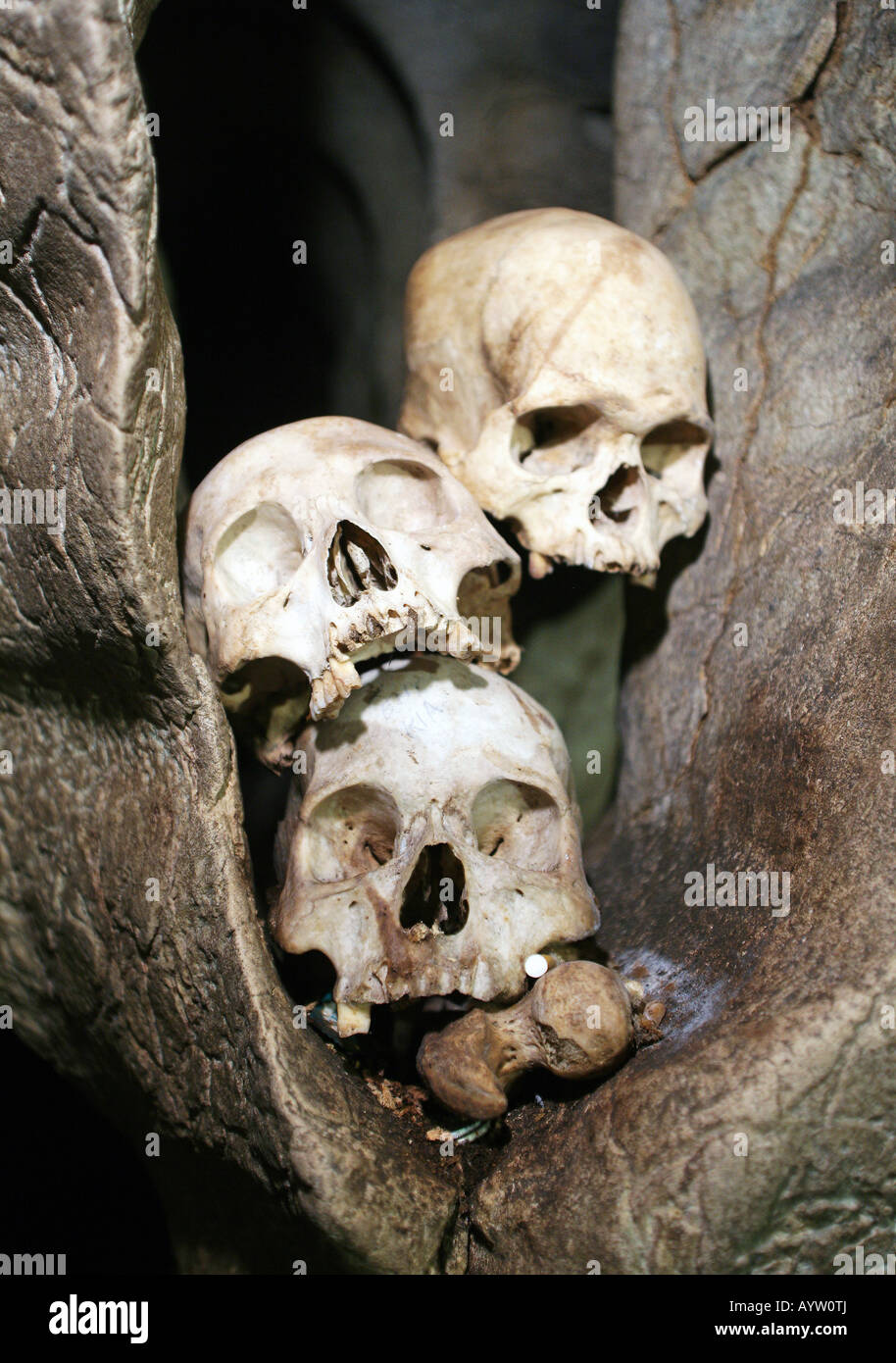 Indonesia: Skull in a burial chamber of the caves graves in Londa, Sulawesi Island - Stock Image