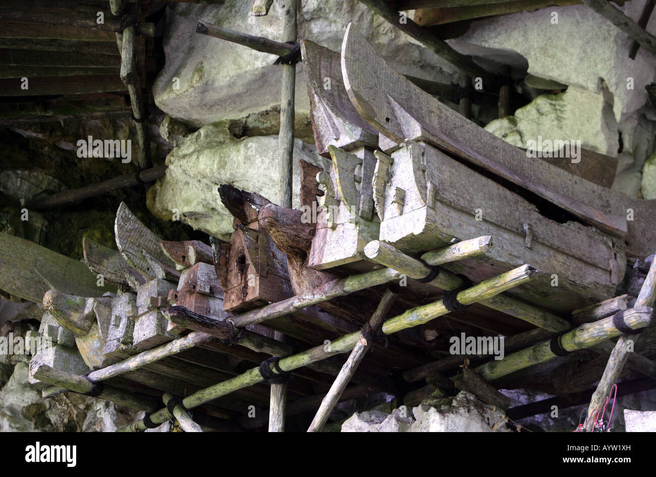 Indonesia: Coffins in a burial chamber of the caves graves in Londa, Sulawesi Island Stock Photo
