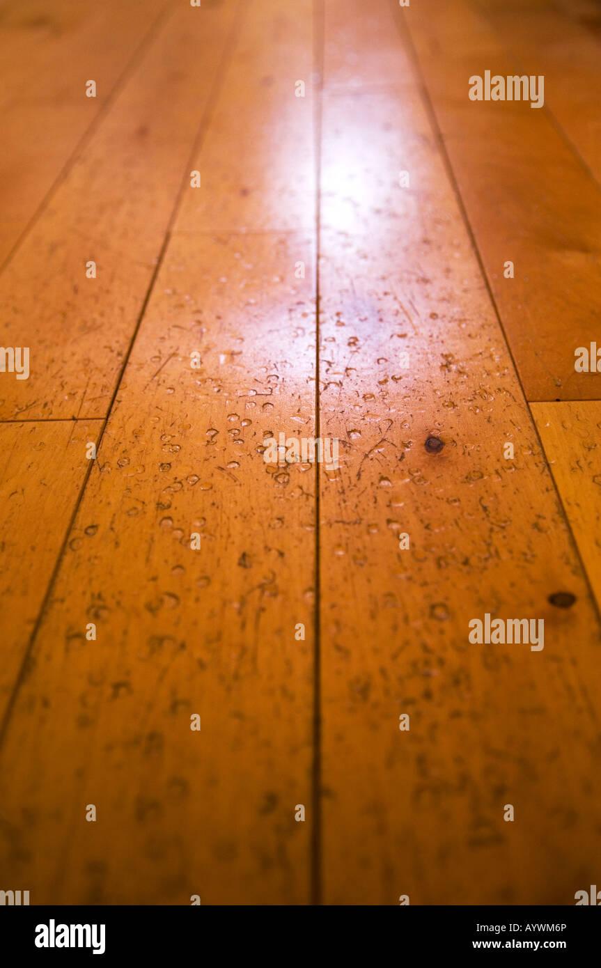 Close up of damaged laminated softwood flooring - Stock Image