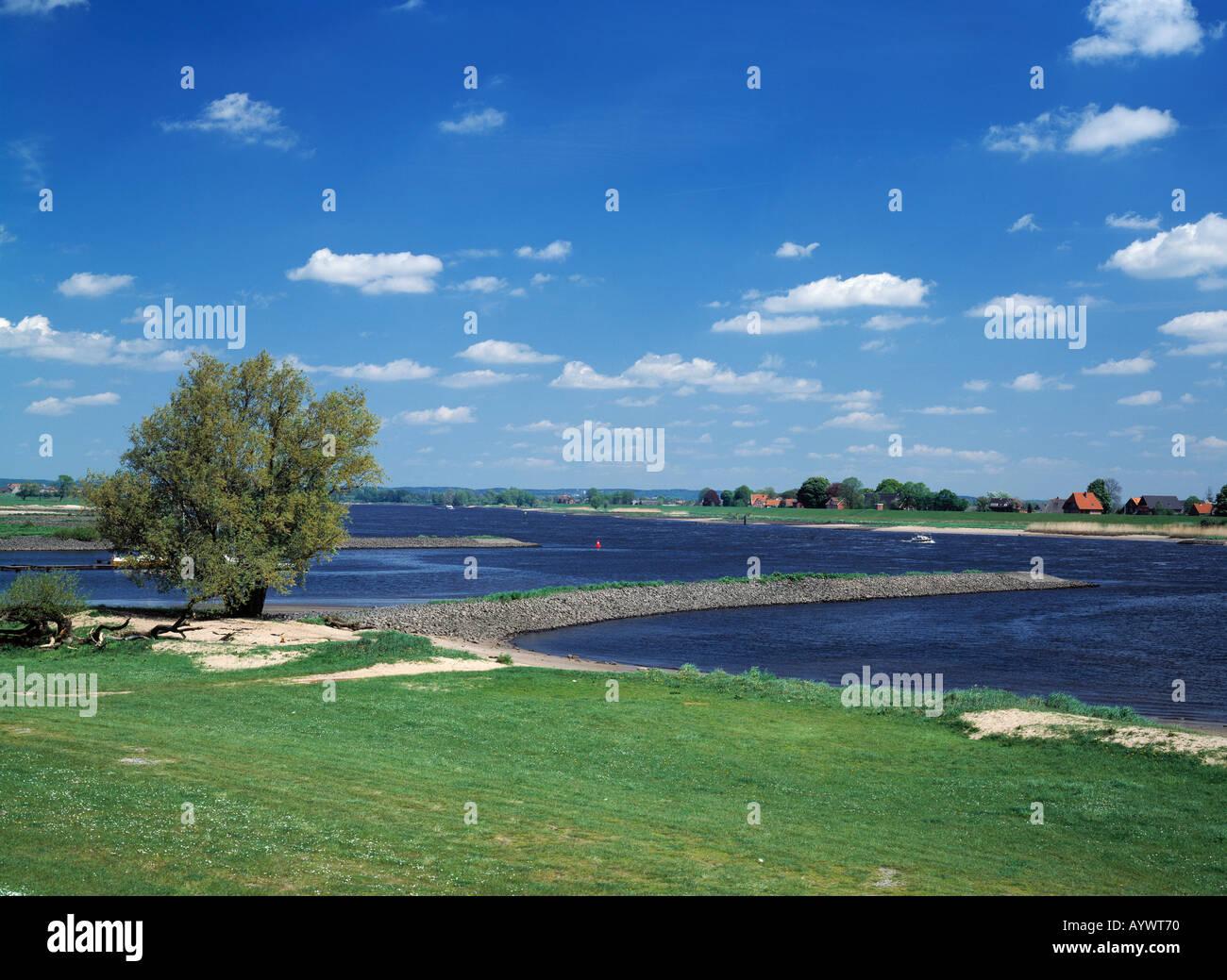 Flusslandschaft, Elbelandschaft in Vierlande, Blick ueber die Elbe nach Niedersachen, Hamburg, Elbe - Stock Image